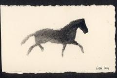 caballo_con_firma